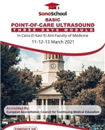 Basic Point Of Care Ultrasound Three Days